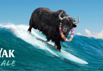 CUB8177_Wild Yak_Surfboard_OOH_@10%_12.66x3.35m.pdf